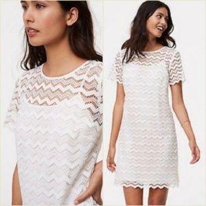 Ann Taylor LOFT Chevron Lace Shift Dress